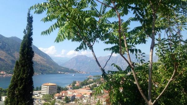 montenegro 1.jpg
