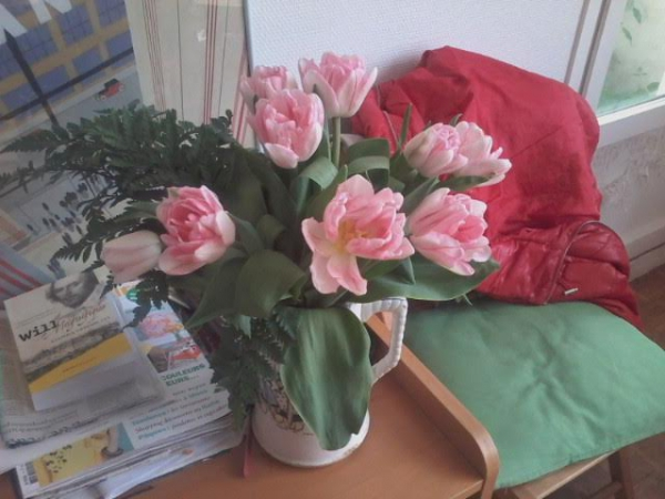 tulipes roses.jpg