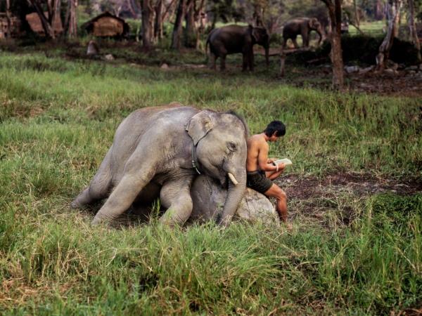 thailand-steve.jpg