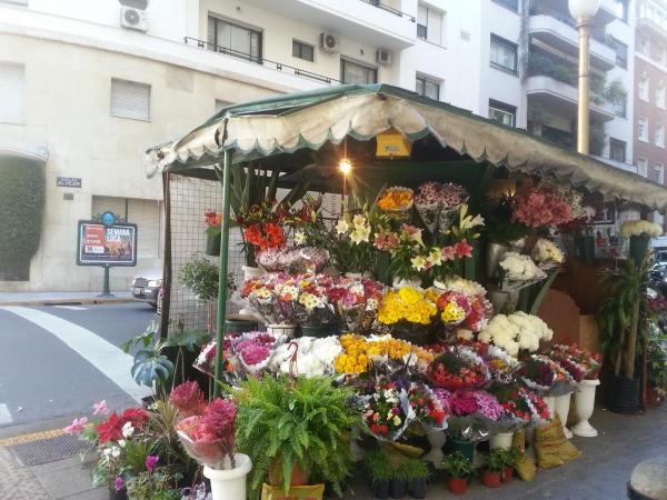 fleurs buenos aires.jpg