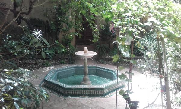 jardin fès.png