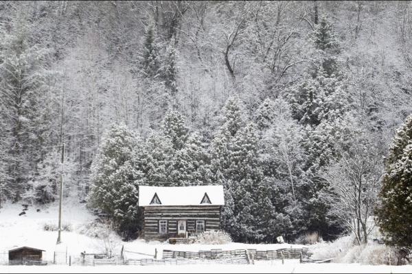 Neiges-de-printemps.jpg