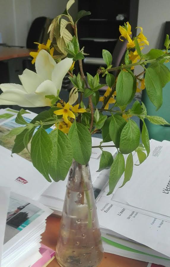 fleurs bureau.jpg