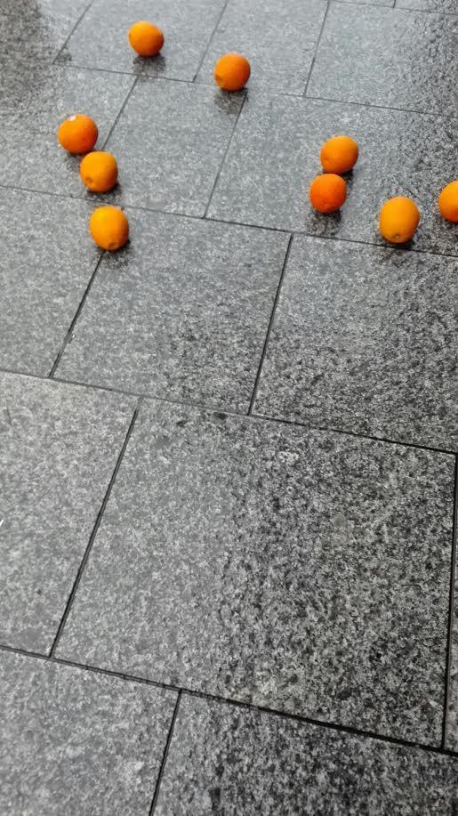 oranges 1.jpg
