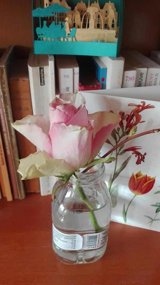 rose sncf.jpg