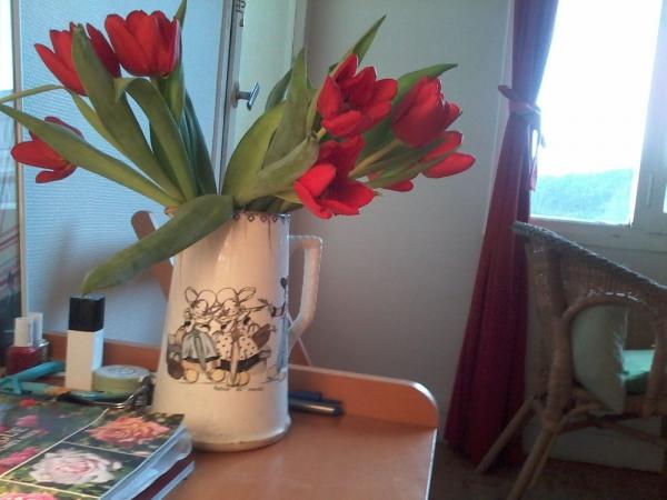 tulpes.jpg